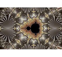 Web of an Uncommon Mandelbrot Photographic Print