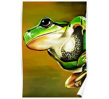 The American green tree frog (Hyla cinerea) Poster