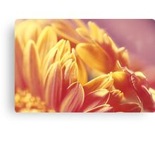 Gently Burning Canvas Print