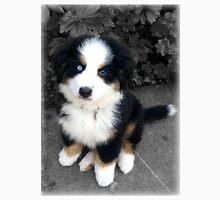 Cute Bernese Mountain Dog Puppy Unisex T-Shirt