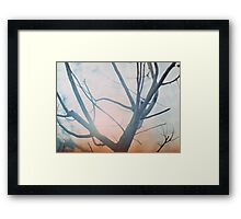 Coming Down Framed Print