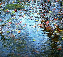 Jewels of the Fall on Water by Morag Bates