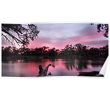 Pink Reflections Poster