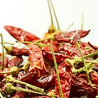 Dried chilli pepper by Proobjektyva