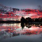Fire In The Sky II by Mark Cooper