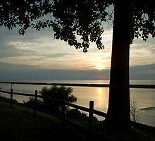 Sunset on Lake Ontario w/ Sailboat by Elizabeth Carpenter