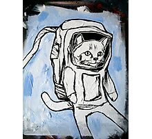 exploring the depths of outer space for the elusive galactic catnip Photographic Print