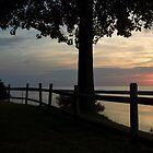 Sunset peeking behind a fence by Elizabeth Carpenter