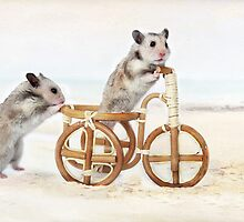 Adventures of hamsters on a bicycle by Elena Eremina
