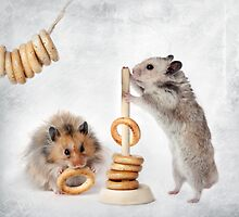 hamsters are by Elena Eremina