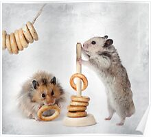 hamsters are Poster