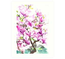 Large Magnolia Tree Blossoming Art Print