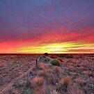 Fenceline Sunrise by Mark Cooper