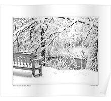 Nichols Arboretum #4 Poster