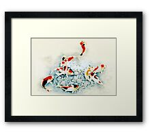 Koi carp (Nishikigo) (Chinese brush art) Framed Print