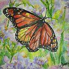 Beautiful Transition by Jennifer Ingram
