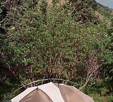 igloo camp by steveschwarz