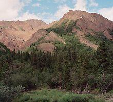 Igloo Mountain by steveschwarz