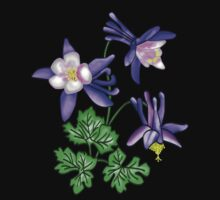 Columbine Flower - Colorado's State Flower by Ozone Clothing