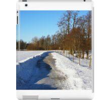 Osuden trails iPad Case/Skin