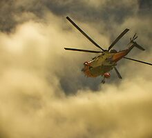RNAS Culdrose Search and Rescue  by Terri Waters