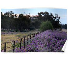 Purple Haze II Poster