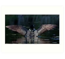 I once caught a fish....Common Loon Art Print