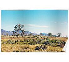 Flinders Ranges landscape Poster