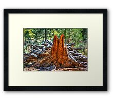 A Giants Remains Framed Print
