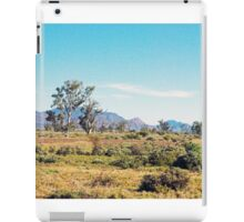 Flinders Ranges landscape iPad Case/Skin