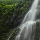 Part of Amboli Waterfall, Western Ghat, India by Biren Brahmbhatt