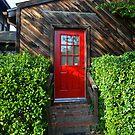 Red door by NIKULETSH