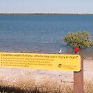 Human Crocodile Bait, Karumba, North Queensland by Adrian Paul