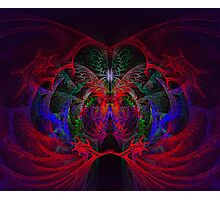 Butterfly Chamber Photographic Print