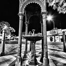 Whitcombe Fountain by Mark Cooper