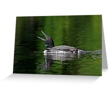 Call of the loon - Common Loon Greeting Card
