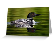 Calming Greens - Common Loon Greeting Card