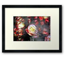 Out of the Darkness into the Light Framed Print