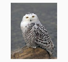 Owl on the Rocks - Snowy Owl T-Shirt
