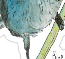 Blue-gray Gnatcatcher Sticker