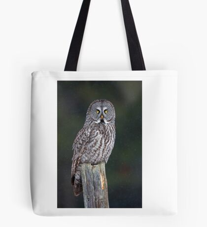 Great Grey Owl on Post Tote Bag