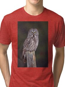 Great Grey Owl on Post Tri-blend T-Shirt