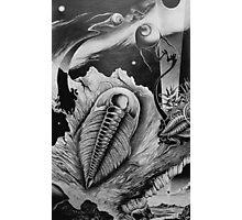 Fossillized Dream Image Photographic Print