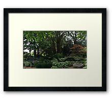 Loch Ness Monster In The Garden ? Framed Print