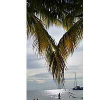 Tropical Paradise with and Ocean View Photographic Print