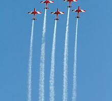 Roulettes 2 by Nigel Donald
