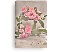 Pink Rose Tea Canvas Print