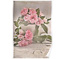 Pink Rose Tea Poster