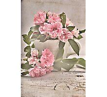 Pink Rose Tea Photographic Print