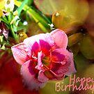 Birthday card by NIKULETSH